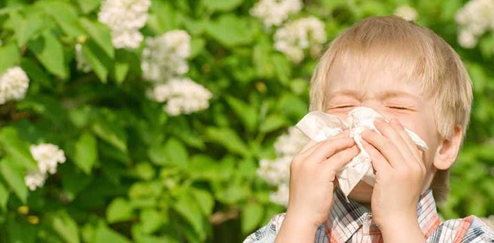 Cómo prevenir la alergia